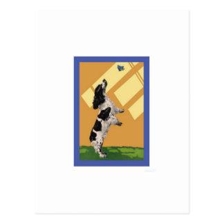 Cartão Postal Spaniel de Springer inglês
