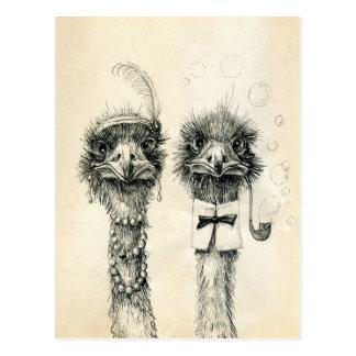 Cartão Postal Sr. e Sra. Avestruz