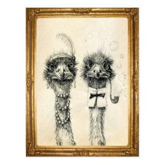 Cartão Postal Sr. e Sra. Avestruz quadro