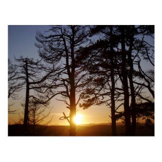 Cartão Postal Sun ajustou-se em Aberdeen Scotland