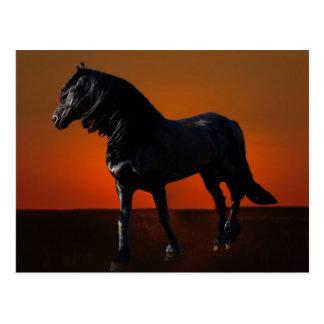 Cartão Postal Um traquinagem do por do sol dos cavalos