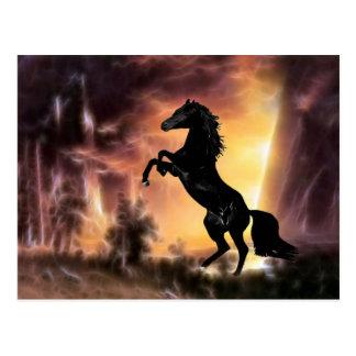 Cartão Postal Uma elevação do cavalo do garanhão do frisão