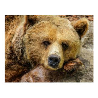 Cartão Postal Urso de urso preguiçoso