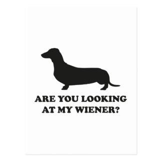Cartão Postal Você está olhando meu Wiener?