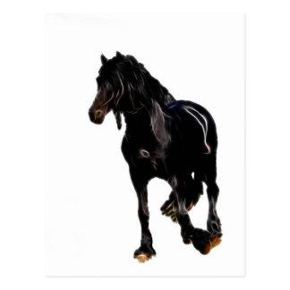 Cartão Postal Volta repentina dos cavalos