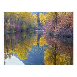 Cartão Postal WA, floresta nacional de Wenatchee, angra de