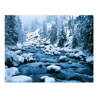 Cartão Postal WA, floresta nacional de Wenatchee, cascata
