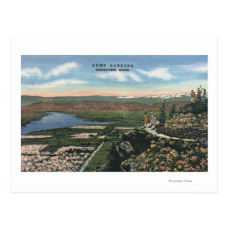 Cartão Postal Wenatchee, WashingtonView de Ohme jardina # 1