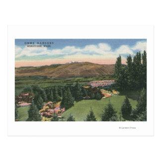 Cartão Postal Wenatchee, WashingtonView de Ohme jardina # 2
