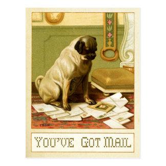 Cartão Postal You've obteve o correio
