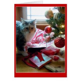 Cartão Presente de Natal de abertura rebentado gato cedo