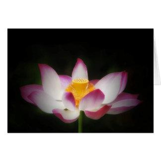 Cartão Presente do OM da ioga da fotografia da flor de