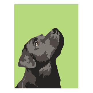 Cartão preto de Labrador (escolha sua própria cor)