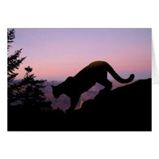 Cartão Puma e o Grand Canyon