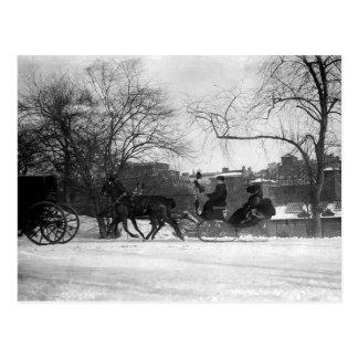 Cartão puxado a cavalo do trenó NYC