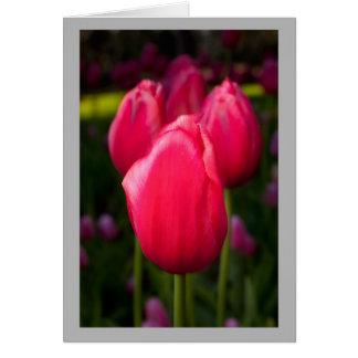 Cartão Quatro tulipas vermelhas