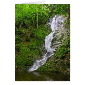 Cartão Quedas do ribeiro de Ross da cachoeira de
