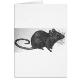 Cartão Rato