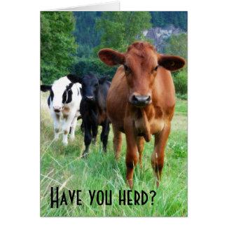Cartão Rebanho pequeno de três vacas