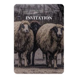 Cartão Rebanho rústico da fazenda do rancho da estrada
