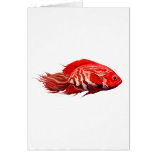 Cartão redfish.jpg
