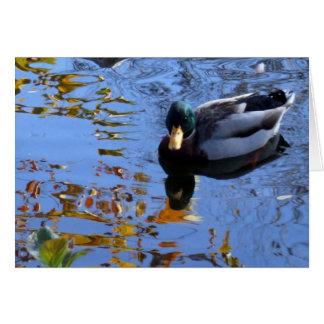Cartão Reflexões do pato