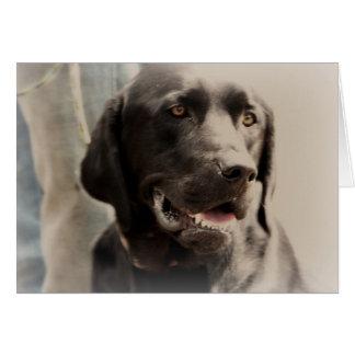 Cartão Retrato preto bonito de labrador retriever