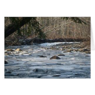 Cartão rio