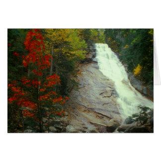 Cartão Ripley cai no outono, montanhas brancas