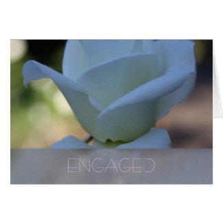 Cartão Rosa branco puro