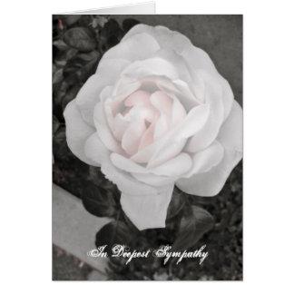 Cartão Rosa da relembrança