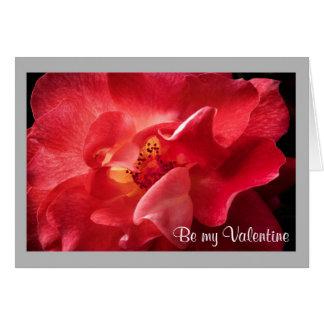 Cartão Rosa vermelha de incandescência dos namorados 44