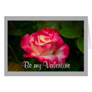 Cartão Rosa vermelha dos namorados 18