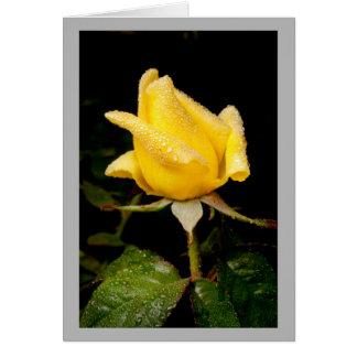Cartão Rosebud amarelo minúsculo com gotas de orvalho