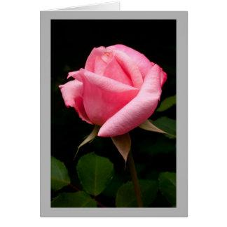 Cartão Rosebud cor-de-rosa dos namorados 13
