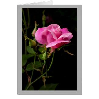 Cartão Rosebud cor-de-rosa dos namorados 17