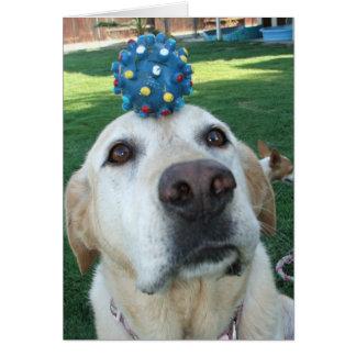 Cartão Roxy que equilibra a bola azul