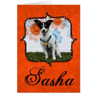 Cartão Sasha - Jack Russell