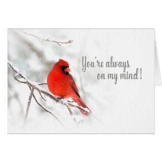 Cartão Sempre em minha mente - cena cardinal vermelha da