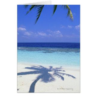 Cartão Sombra da palmeira