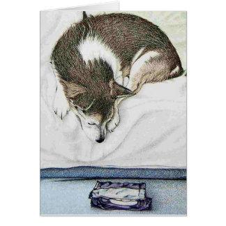 Cartão Tentação bonito do cachorrinho!