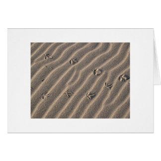 Cartão Trilhas do pássaro na areia