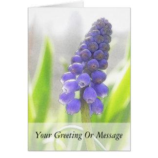 Cartão Uma única flor do jacinto de uva