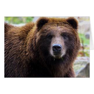 Cartão Urso de urso de Brown