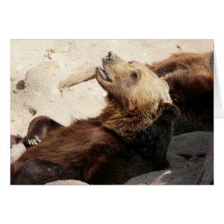 Cartão urso que olha acima