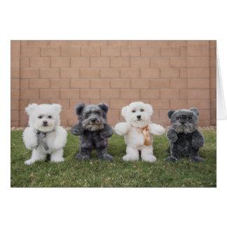 Cartão Ursos de ursinho
