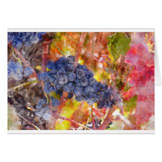 Cartão Uvas do vinho tinto na videira