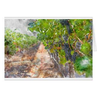 Cartão Uvas na videira em Napa Valley Califórnia