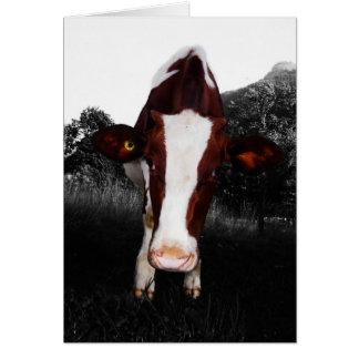 Cartão Vacas - não sempre preto e branco