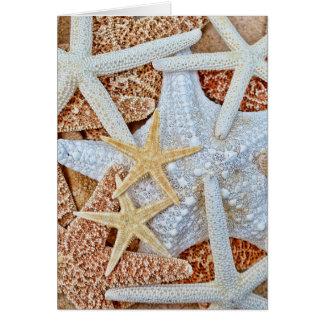 Cartão Variedade da estrela do mar